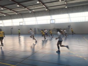 Handball : from the inside